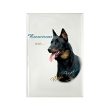 Beauceron Best Friend1 Rectangle Magnet (10 pack)