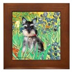 Irises / Miniature Schnauzer Framed Tile