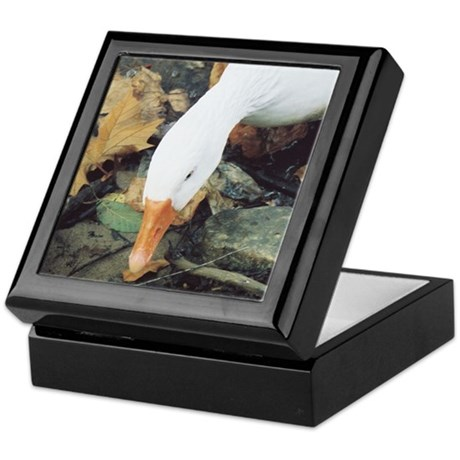 Autumn Duck Keepsake Box