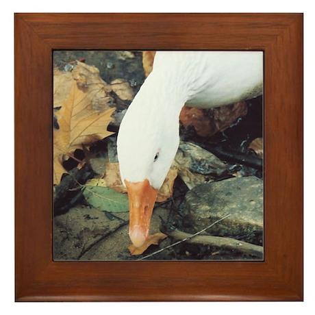 Autumn Duck Framed Tile