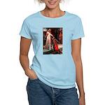 Accolade / Schnauzer (#8) Women's Light T-Shirt