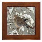 Winter Dove Framed Tile