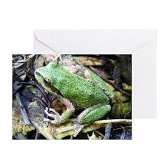 Pacific Chorus Frog Treefrog Greeting Cards (Pk of