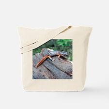 Ensatina Salamander Tote Bag