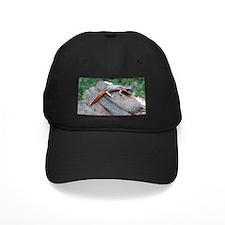 Ensatina Salamander Baseball Hat