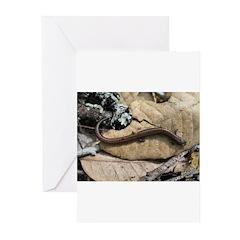 California Slender Salamander Greeting Cards (Pk o