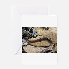 California Slender Salamander Greeting Card