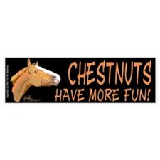 Horse Bumper Car Sticker