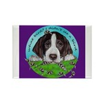German Shorthair Hunting Pup Magnets