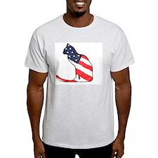 Patriotic Cat Ash Grey T-Shirt