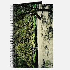 Central Australia River Bed Journal