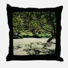 Central Australia River Bed Throw Pillow