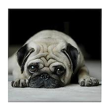 Sad Pug Tile Coaster