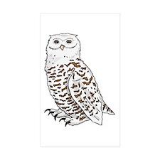 Snowy Owl Rectangle Sticker 10 pk)