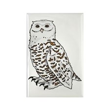 Snowy Owl Rectangle Magnet (100 pack)
