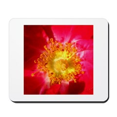 Heart of a Wild Rose Mousepad