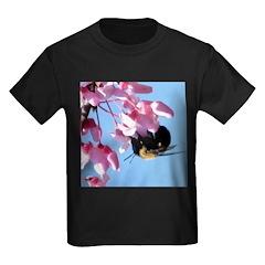 Bee dangling from Judas-tree flowers T