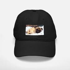 Cute Breed dogs pet Baseball Hat