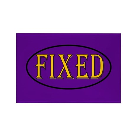 Fixed Rectangle Magnet (100 pack)