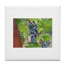 Wine Grapes Tile Coaster