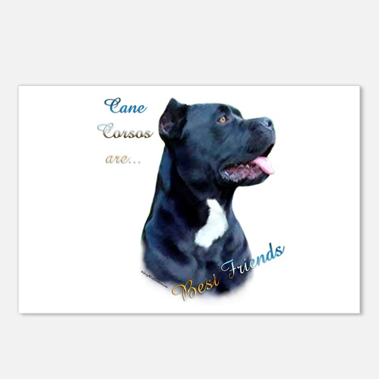 Corso Best Friend1 Postcards (Package of 8)