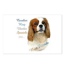 Cavalier Best Friend1 Postcards (Package of 8)