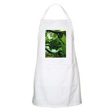 Hang in There! BBQ Apron