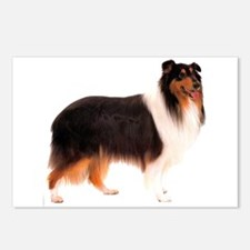 Black Rough Collie Postcards (Package of 8)