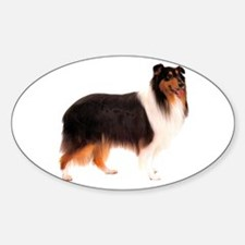Black Rough Collie Oval Decal