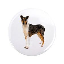 "Smooth Collie Dog Lover 3.5"" Button"