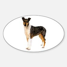 Smooth Collie Dog Lover Oval Decal