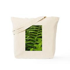 Ferns Tote Bag