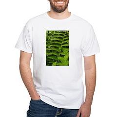 Ferns Shirt