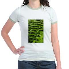 Ferns T