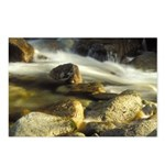 Red Stream Postcards (Package of 8)