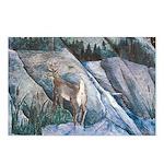 Pockwockamus Rock Postcards (Package of 8)