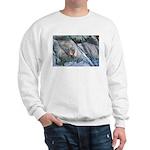 Pockwockamus Rock Sweatshirt