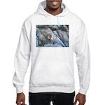 Pockwockamus Rock Hooded Sweatshirt