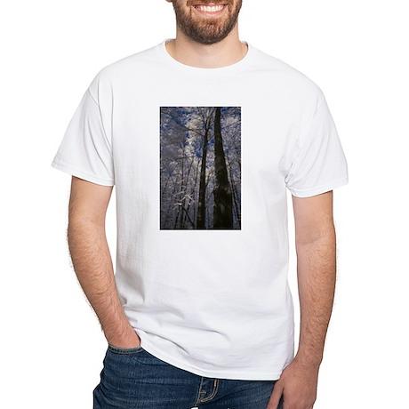 Tall Trees White T-Shirt