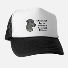 NM Owned Trucker Hat