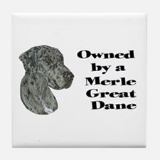 NM Owned Tile Coaster