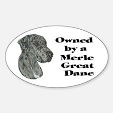 NM Owned Oval Decal