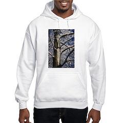 Snowy Maple Hoodie