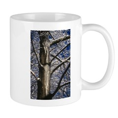 Snowy Maple Mug
