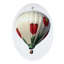 Helaine's Hot Air Balloon 6 Oval Ornament