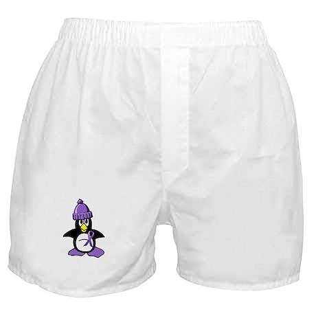 Winter Penguin 1 Hodgkin's Lymphoma Boxer Shorts