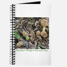 Morel Mushroom Journal