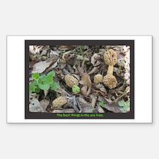 Morel Mushroom Rectangle Decal