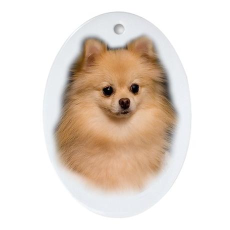Pomeranian Portrait Oval Ornament