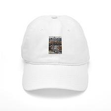 Big Cedar Lodge Baseball Cap